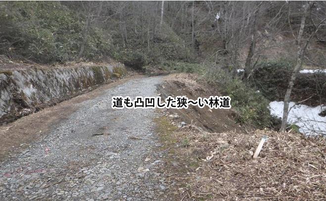 狭い林道のイメージ