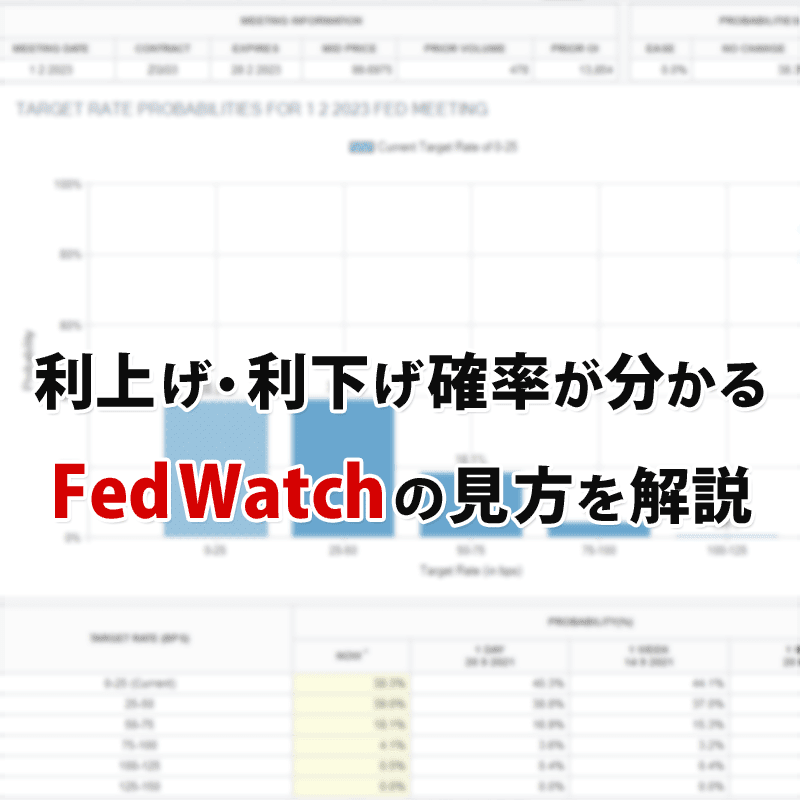 FedWatchの見方を分かりやすく解説